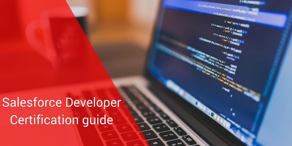 Salesforce Developer Certification Training Guide Mason Frank