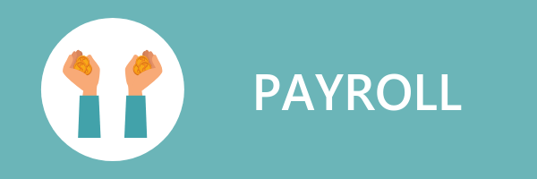 Salesforce payroll add-ons